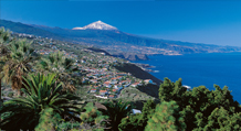 Tenerife South from €19.99