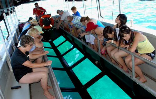 Glass bottom boat trip