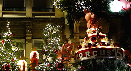 Strasbourg's Christmas Markets: Façades and Illuminations